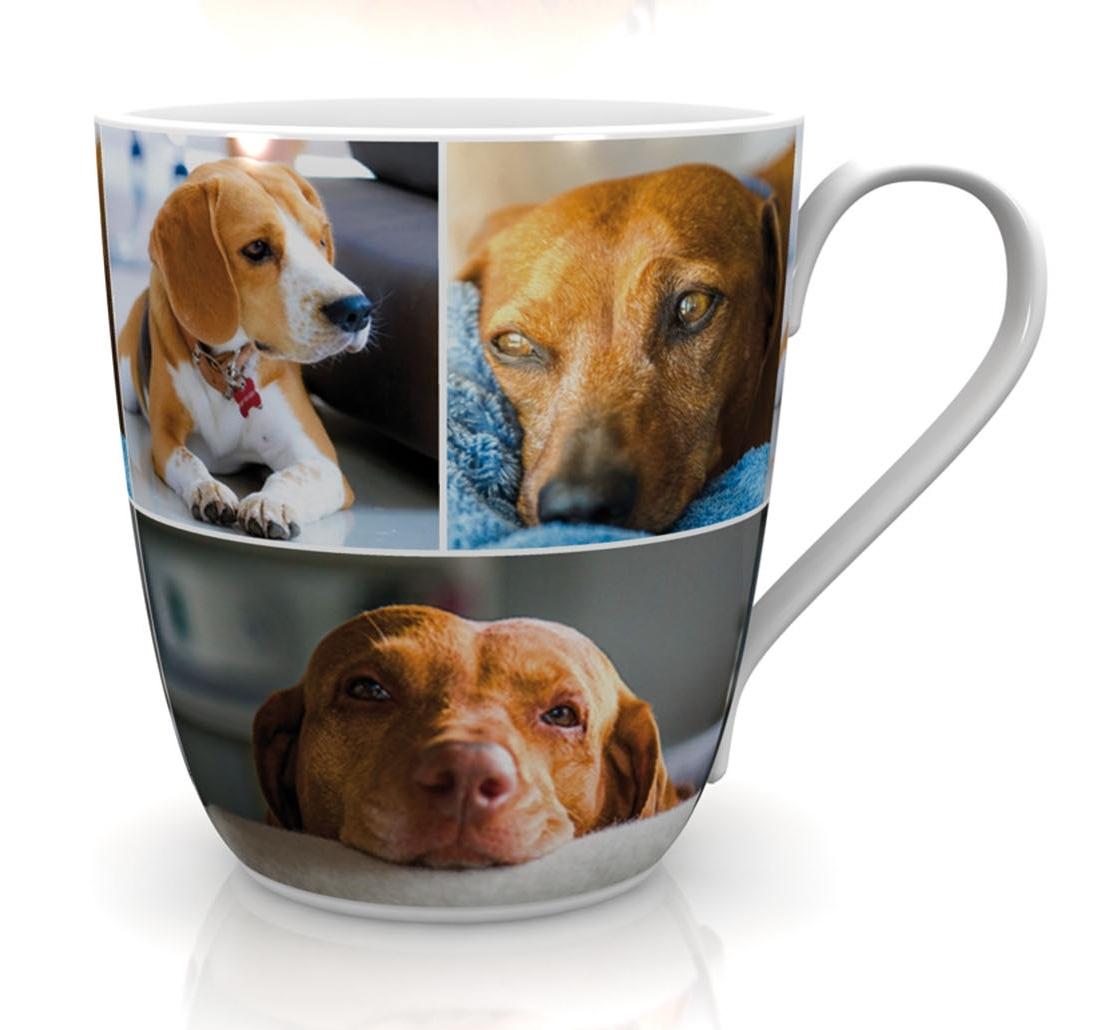 Cats&Dogs Kaffeebecher
