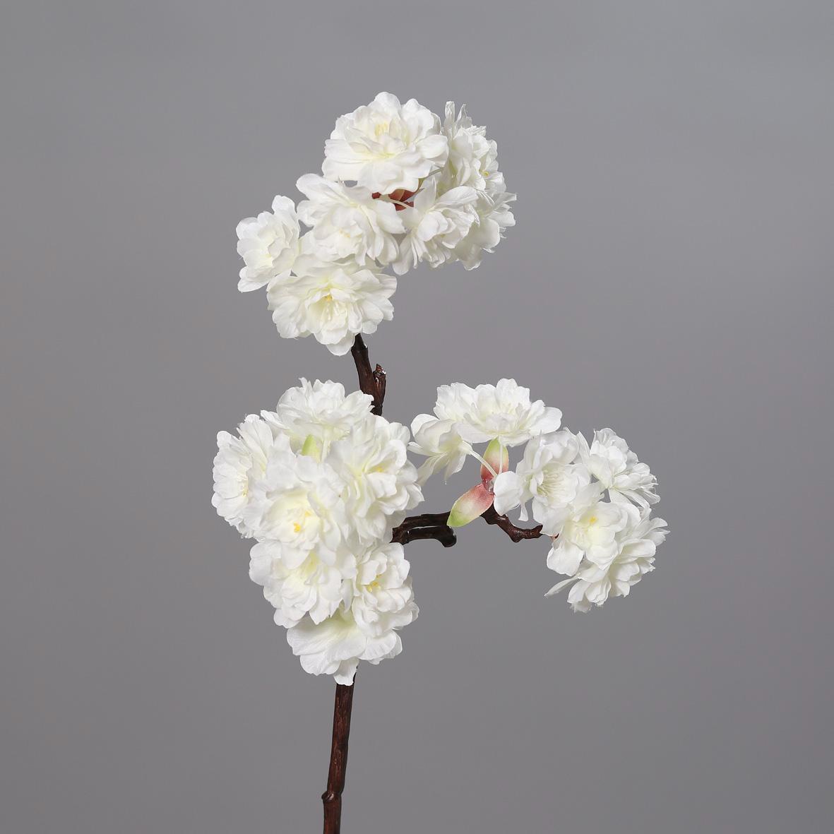 Kirschblüten-Pick