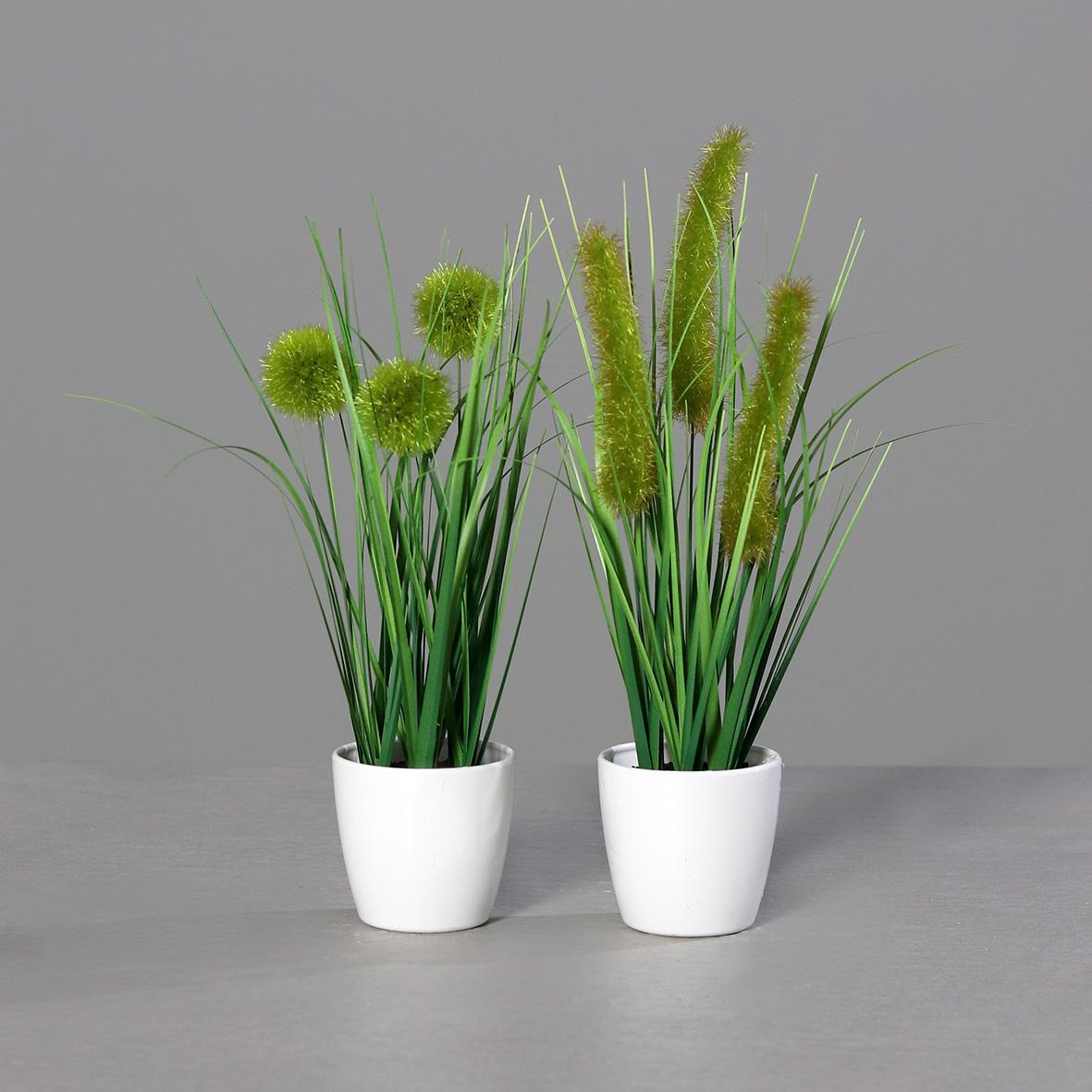Grassortiment